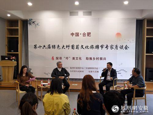 中国·合肥第十六届绿色大圩葡萄文化旅游节专家座谈会举行