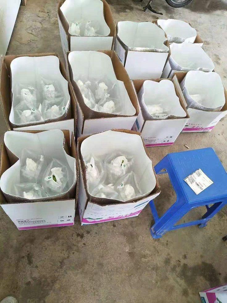 上海阳光玫瑰葡萄多少一斤?