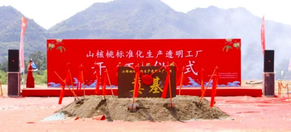 年产10000吨!广厦承建的临安山核桃透明工厂开工!